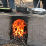 סדנת בישול בטבע