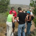 סדנאות מקצועיות לפיתוח צוותי חינוך וצוותי הוראה ופדגוגיה