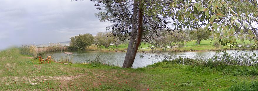 נוף בנאות קדומים - השקט הירוק של פארק