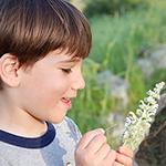 סודות הטבע – סיור בוטניקה לילדים לכבוד ט